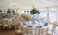 Click to visit Bees Marquees
